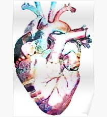 Anatomy - Heart Watercolor Poster