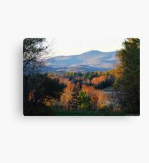 Mountains of Belmont Canvas Print