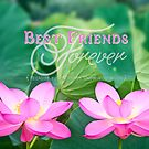 Best Friends Forever Gorgeous Pink Lotus Flower Pair by Beverly Claire Kaiya