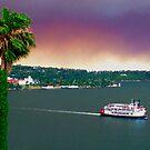 Fire Haze Over Sydney Harbour - Kirribilli- October 2013 by ShotsOfLove