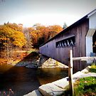 Covered Bridge by Sandra Pearson