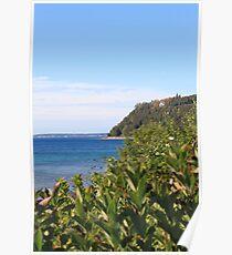 Mackinac Island Poster