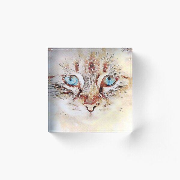 Cat Acrylic Block