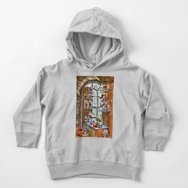 Various Potions Toddler Pullover Hoodie