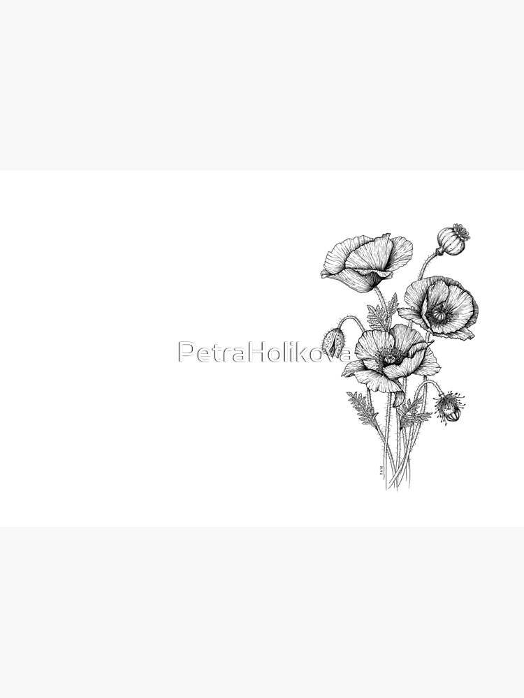 Poppies by PetraHolikova