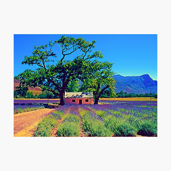 Franschhoek, South Africa - Fine Art Collection Photographic Print