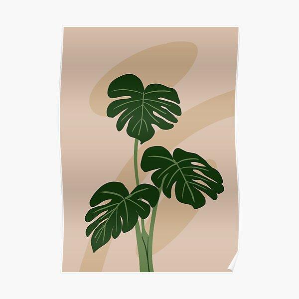 Monstera plant leaves, illustration art Poster