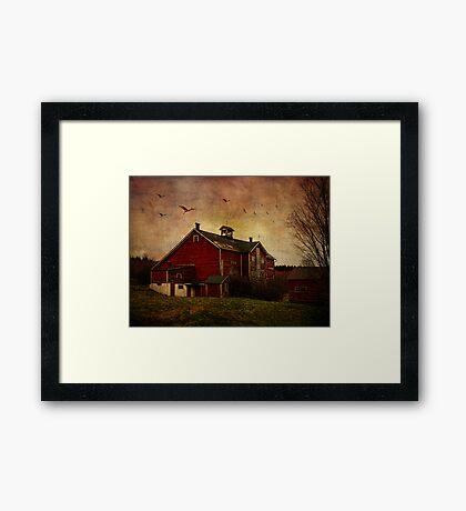 Flight Over the Barn Framed Print