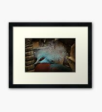 Victoria Crowned Pigeon in tribal decor Framed Print