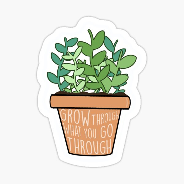 Grow Through what you Go Through Plant Sticker