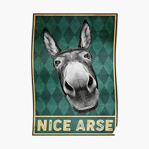 New Nice Arse Poster