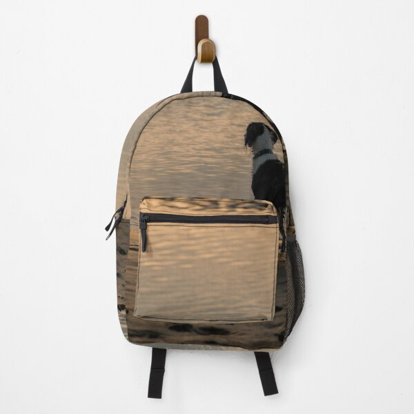 reflections Backpack