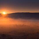 High Desert Morning Mist by DawsonImages
