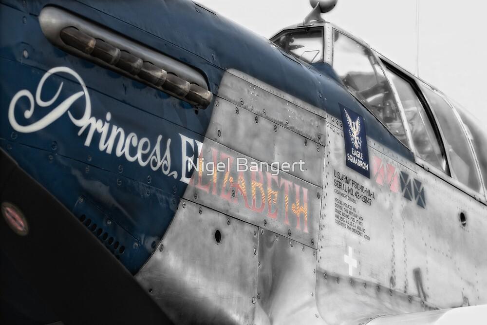 Princess Elizabeth Mustang by Nigel Bangert