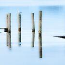 Blue Derwent Water Dusk  by Jason Smalley