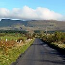 Country Roads, Ireland by JoeTravers