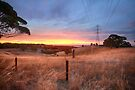 Chandlers Hill Sunset by Raymond Warren