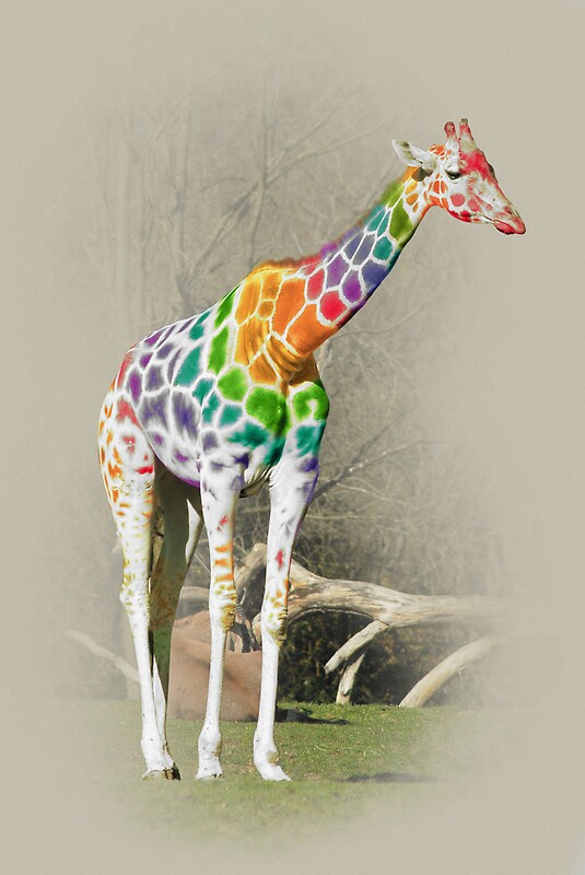 Quot Rainbow Giraffe Quot By Kitty Bitty Redbubble
