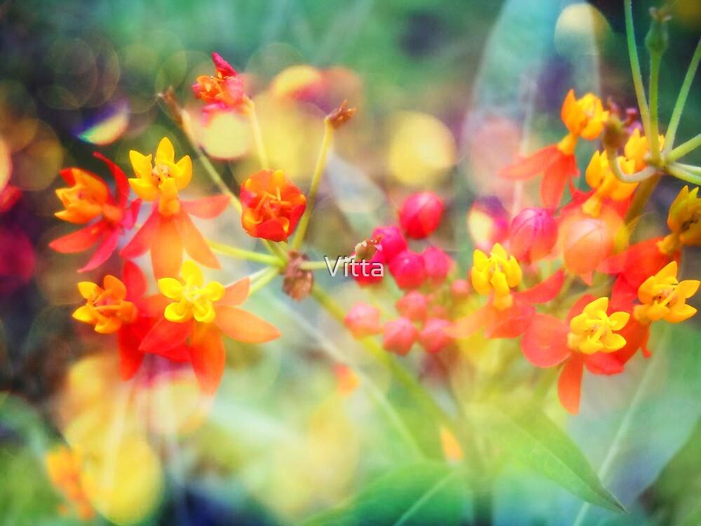 Autumn Flowers by Vitta