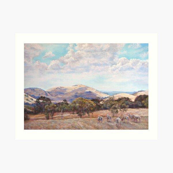 Strathbogie Summer Landscape  Art Print