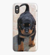 Cute Rottweiler Puppy Walking Towards The Camera iPhone Case/Skin