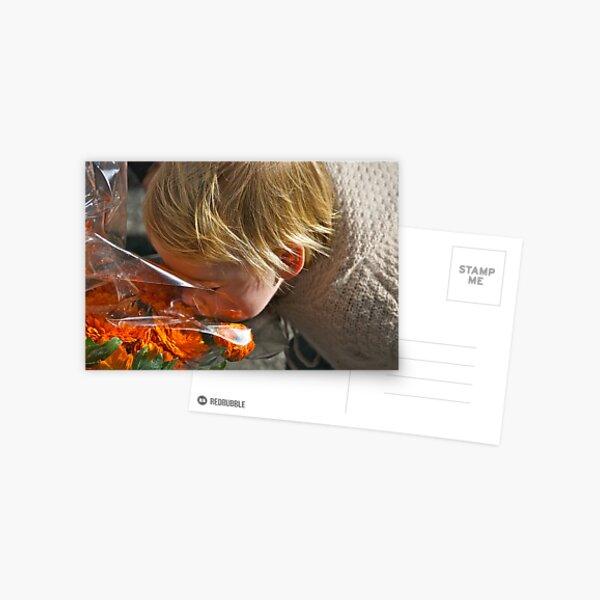 Sweet.... Postcard