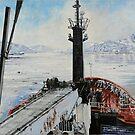 Leaving safe harbour by David McEwen
