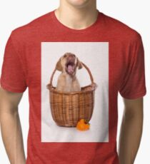 Funny brown puppy retriever Tri-blend T-Shirt