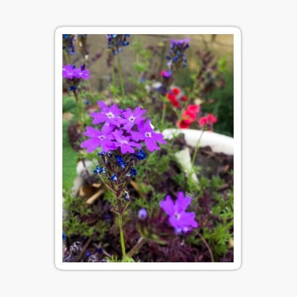 Flowers in a pot Sticker
