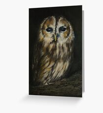 Tawny owl Greeting Card