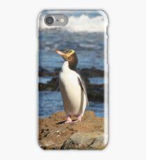 Yellow-eyed Penguin iPhone Case/Skin