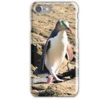 Yellow-eyed Penguin Walking iPhone Case/Skin