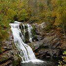 Bald River Falls TN by NEDP