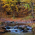 The Babbling Brook by jules572