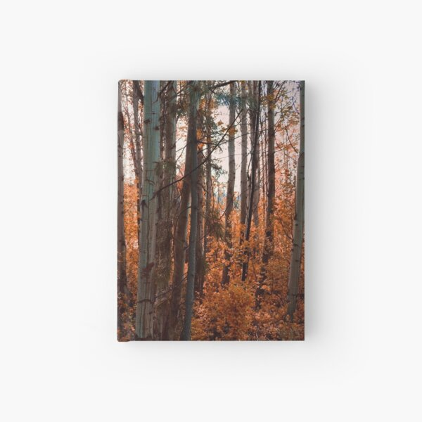 8. Threa  Hardcover Journal