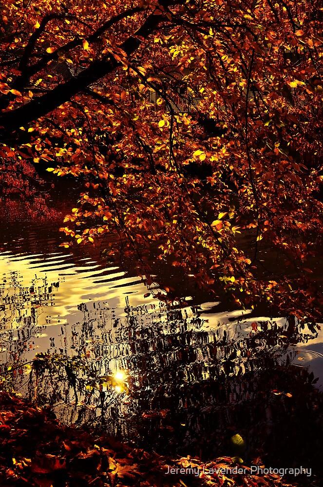 Autumn Reflections... by Jeremy Lavender Photography