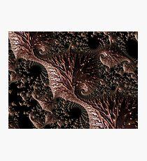 Chocolate Alien Landscape Photographic Print