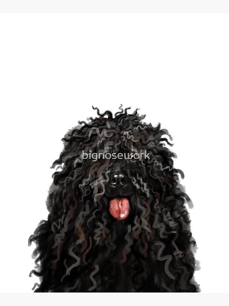 Black Puli Dog by bignosework