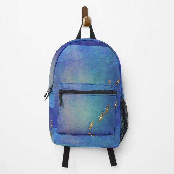 Soar higher Backpack