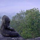 Contemplation by Brian Bo Mei