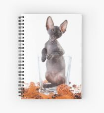 Charming kitty cat sphynx without hair Spiral Notebook