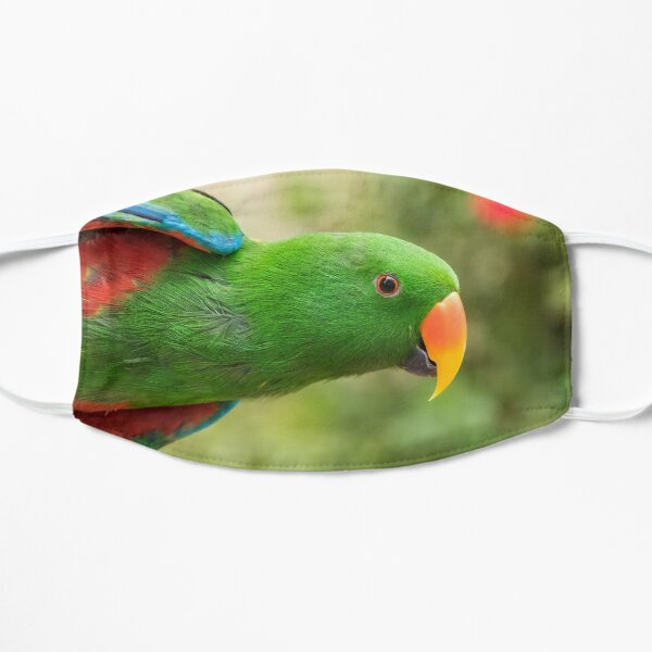 Eclectus Parrot acting the fool Mask