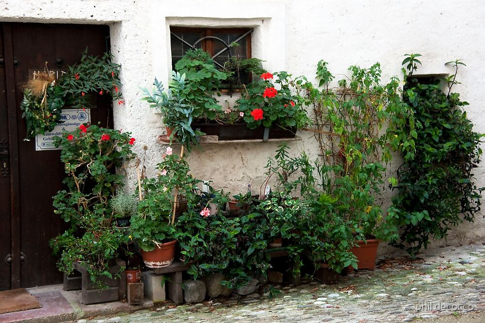 Front Wall Garden by phil decocco