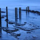 Sticks in the Sea by Harry Purves