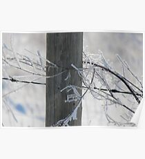 Fencepost in Winter  Poster