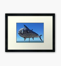 Utensil fish. North Queensland  Framed Print