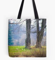 ANOTHER DAY AT THE POND Tote Bag