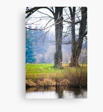 ANOTHER DAY AT THE POND Canvas Print