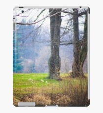 ANOTHER DAY AT THE POND iPad Case/Skin