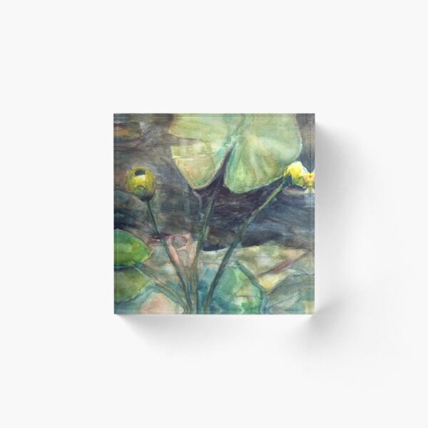 Yellow waterlily Acrylic Block